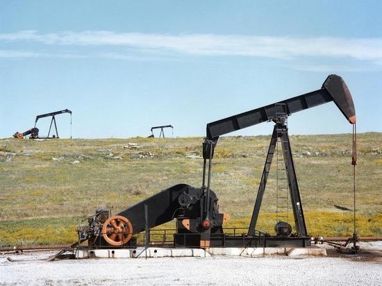 217dc358d8bffa24fe8e4ce04d83da26 - Российский экспорт нефти и газа обвалился в два раза